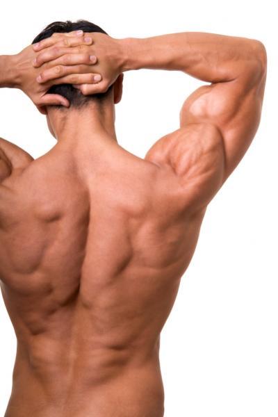 Trainierter R�cken eines Mannes - Natural Bodybuilding ist aber nicht nur M�nnersache (Quelle: Shutterstock/Anetta)
