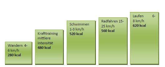 Abnehmen und Energie- und Fettstoffwechsel optimieren