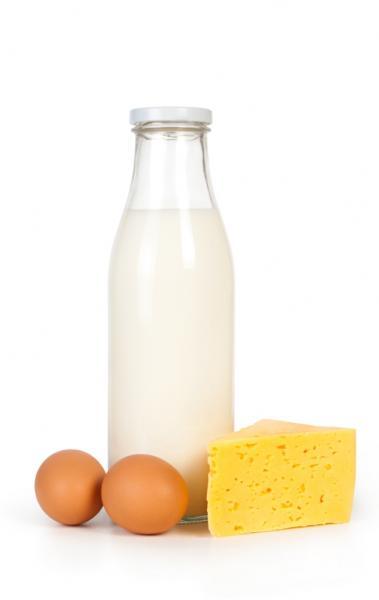Milch und Milchprodukte (Quelle: Shutterstock/urfin)