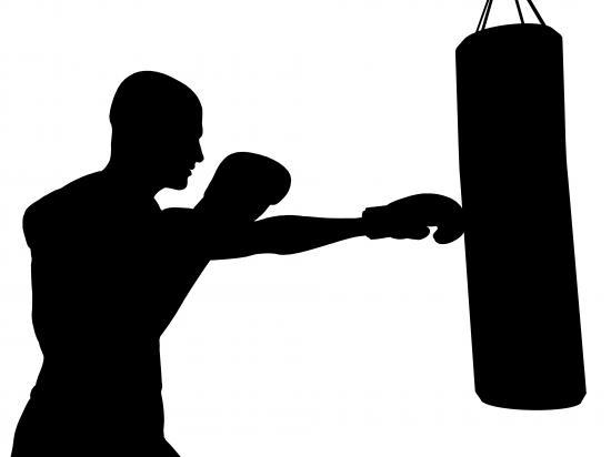 Boxer am Boxsack (Quelle: Shutterstock/Sarah Holmlund)