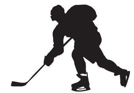 Eishockeyspieler (Quelle: Shutterstock/Dvorko Sergey)