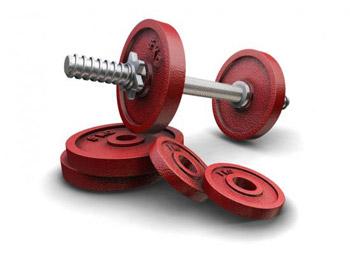 Kurzhantel mit Gewichten (Quelle: Shutterstock/Kjpargeter)