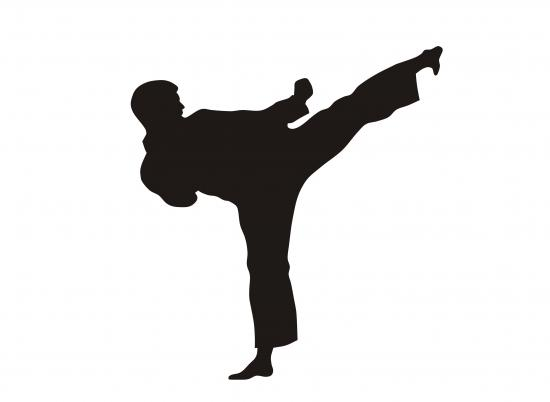 Kampfsportler (Quelle: Shutterstock/oorka)