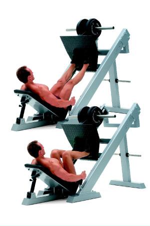 Die Beinpresse im Fitness Studio (kaufen), um den Po und die Quads Muskeln (Oberschenkel) zu trainieren. Anleitung, Ausführung, welche Muskulatur? Gewichte richtig einstellen
