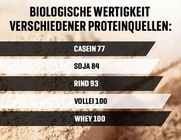 Biologische Wertigkeit von Whey Isolat