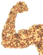 Muskulöser Arm aus Nüssen - Nüsse enthalten Aminosäuren (Quelle: Shutterstock/innerfocus)