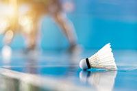Badminton Sportart