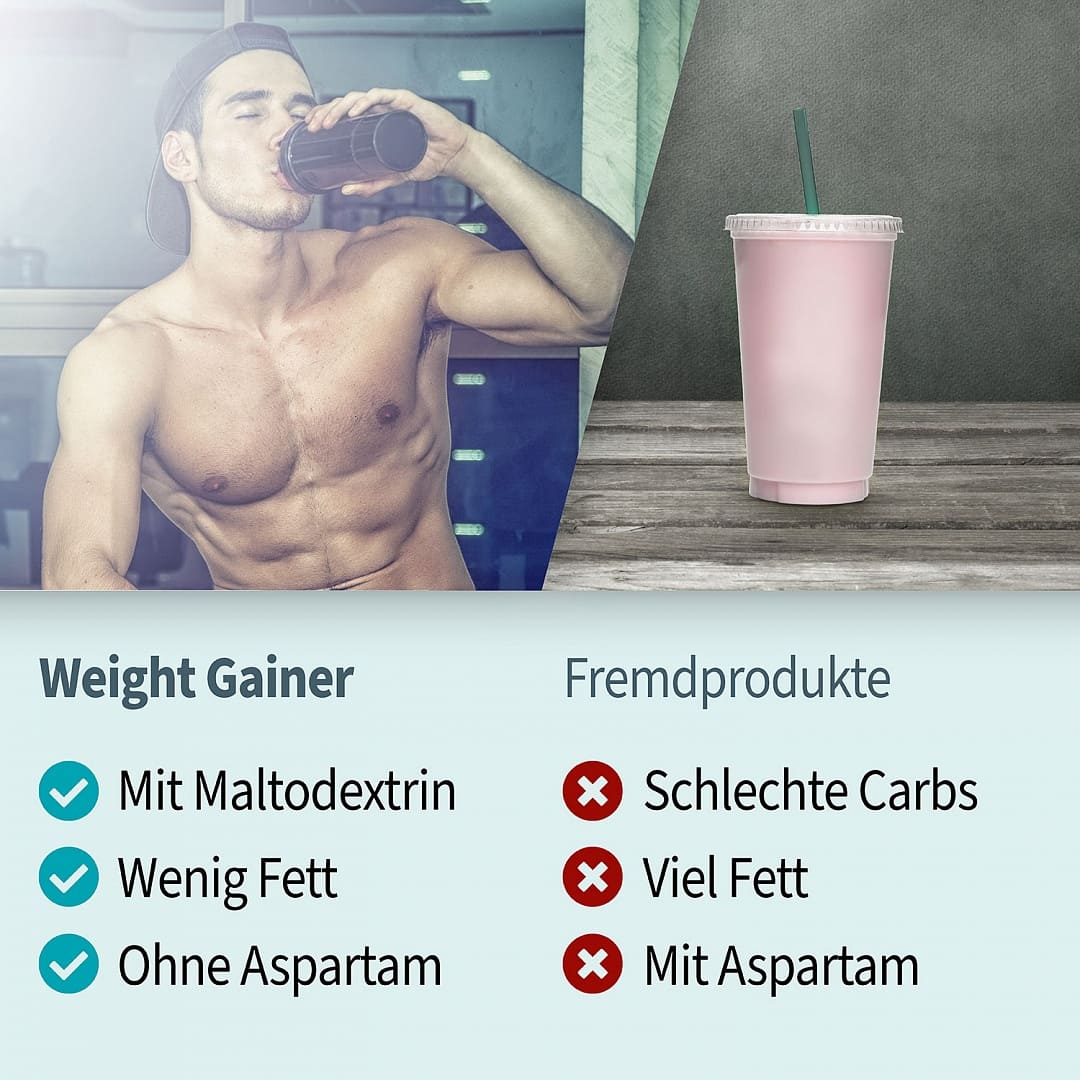 Power Weight Gainer Vergleich