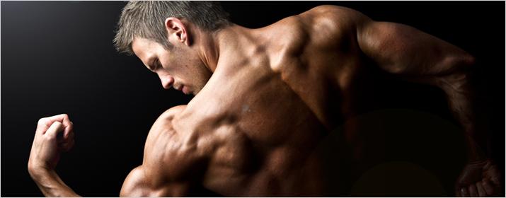 Sportart Bodybuilding