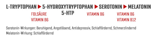Wirkung Tryptophan