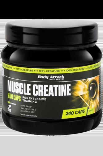 Body Attack Muscle Creatine (Creapure) - 240 Maxi-Caps Restposten