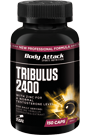 Body Attack Tribulus Terrestris 2400 - 150 Maxi-Caps Restposten