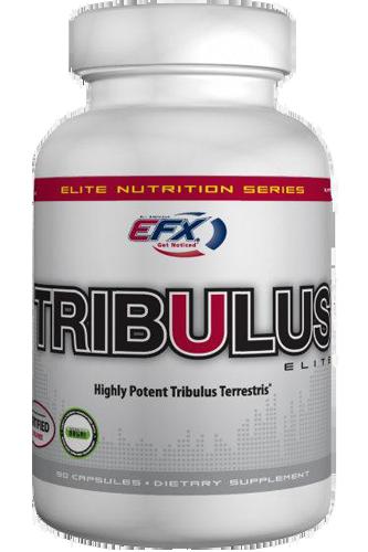 EFX Tribulus Elite 90 Kapseln Restposten