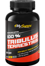 My Supps 100% Tribulus Terrestris Extract - 180 Caps