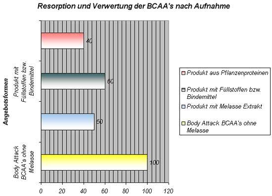 BCAA-Resorption Verwertung nach der Aufnahme